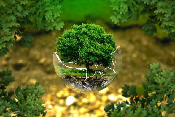 Környezetvédelem napjainkban